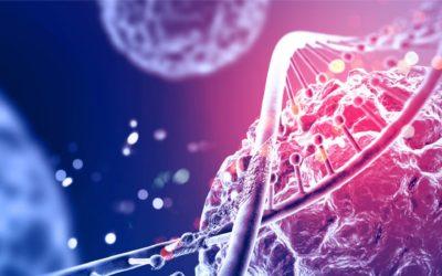 Mitochondria, dlaczego chorujemy?