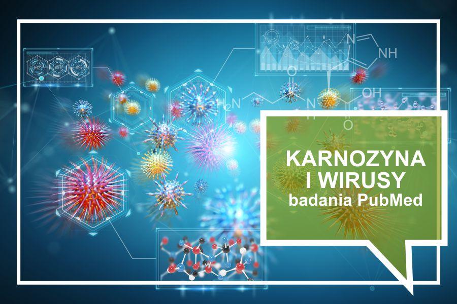 Karnozyna i wirusy – badania PubMed